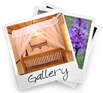 Villa 4 U picture gallery