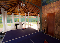 Villa 4 U - Table Tennis